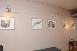 Cécile Savelli, dessins à l'encre de Chine sur papier, Galerie studio des halles, Sète mai 2015 Photo : Studio des halles
